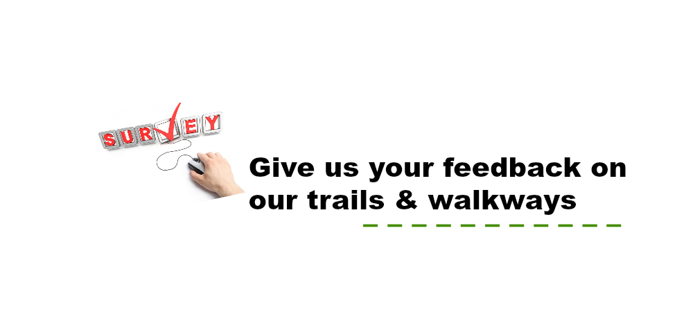 Give us your feedback!