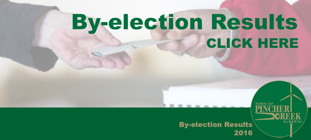 By-election results